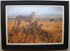 "Julia Rogers ""Vantage Point"" Cheetah giclee on canvas limited edition COA art"