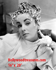 "Elizabeth Taylor~Hair Salon~Salon Decor~Shampoo~Photo~Poster~16"" x 20"""