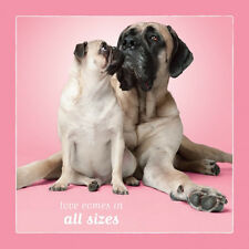Dog Studio Greeting Card- Love/All Sizes (Pug & Bull Mastiff) -#Ds-C-Lv-1193-107