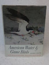 Austin L. Rand  AMERICAN WATER AND GAME BIRDS  1956 1stEd HC/DJ Illustrated