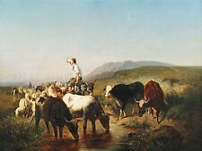 Pintura Paisaje Schreyer ganado ovino Pastor impresión arte cartel lf612