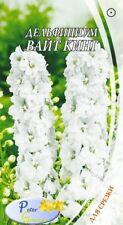 graines de Delphinium White King les Dauphinelles Roi blanc - Pieds d'alouette