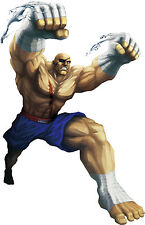 Framed Game Character Print – Sagat Street Fighter (Picture Poster Art XBOX PS4)