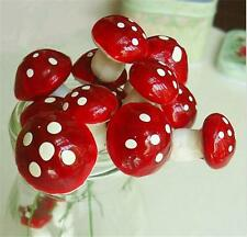 Pack of 10 Toadstools Mushrooms for Plant Pots Fairy Gardens