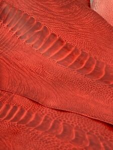 Ostrich Legs Scarlet Red Color Grade A  (%100 Genuine Ostrich Leather)
