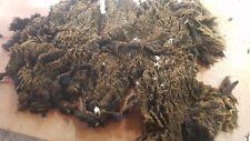 0.9kg Raw Sheeps Fleece Belwin Spinning Weaving Stuffing Insulation 130