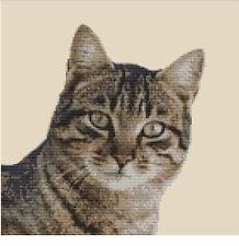 CROSS STITCH KIT -  TABBY CAT  25 X 25 CM