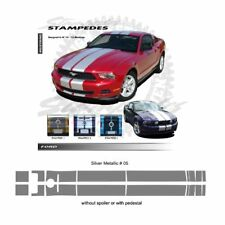 Ford Mustang 2010-2012 Ralley Stripes Graphic Kit - Metallic Silver