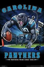 Carolina Panthers PANTHERS PRIDE SINCE 1995 End Zone Dive NFL Theme Art POSTER