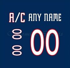 Columbus Blue Jackets 2001-16 Blue Jersey Customized Number Kit un-stitched
