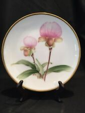 Paphiopedilum charlesworthii - Hand Painted Orchid Plate - rare collectable