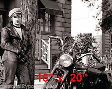 """Marlon Brando~Triumph~Biker~Wild One~Personality~Photo~#4~ Poster 16"""" x  20"""""""