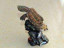 Resin Polyresin Mata Mata Turtle Tortoise Model Figurine Figure