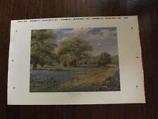 """Vintage 1991 Signed Ronnie Wells Print """"Hill Country Spring"""" Texas Bluebonnets"""