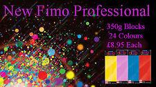 FIMO Professionale 350g Polimero Argilla 24 Colori Per Modelli Gioielleria Arte