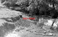 PHOTO  1971 RIVER ASH AT HADHAM CROSS LOOKING SOUTH FROM THE FOOTBRIDGE AT THE F