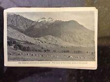 b1c postcard unused new zealand lamb and mountains
