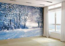 Invierno Paisaje en la Nieve Bosque Papel Pintado Mural Foto 48491600 Económico