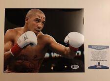 Andre Ward signed autographed 8x10 boxing photo Beckett BAS COA #T32419 SOG