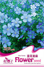 1 Pack 40 Blue Flax Family Seeds Linum Flax Linen Garden Flowers A083