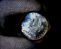1883-p Blast White Unc Morgan Silver Dollar from a Original Roll Will Grade Out