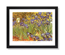Vincent Van Gogh Les Irises Flower Wall Picture Black Framed Art Print