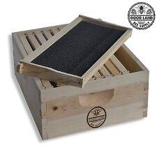 Beehive Brood Kit 10 Wood Frames & 10 Pierco Plastic Foundations Spacer GLHDBOX