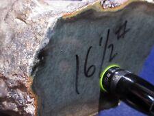 Rare Jade / Nephrite from Wyoming - Old Claim Stock - 16.4 Pounds - Carvers Jade