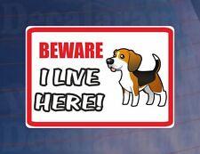 BEWARE I LIVE HERE - BEAGLE House/Home Window/Door/Porch Printed Sticker