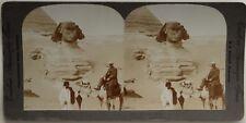 Egypte Devant le Sphinx de Gizeh Photo Stereo Vintage Citrate