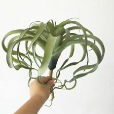 Fake Air Plant Realistic No Soil Succulent Pineapple Leaf Home Garden Decoration