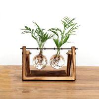 Kreative Blumenzwiebel Vase Pflanze Glas Wasserkultur Behaelter Bauernhof D A4O9