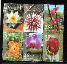 Nederland NVPH 2077-82 Blok van zes Zomerzegels 2002 Postfris