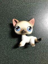Littlest Pet Shop 5 Black White Siamese Cat Blue Eyes