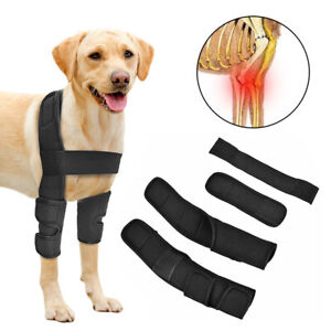 Dog Front Leg Hock Braces Elbow Protector Canine Wrap Wounds Sprains Heal Boxer