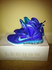 lebron summit lake hornets