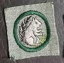 1928-1933 Girl Scout Badge MAMMALS LAND ANIMAL FINDER - GREY GREEN SQUARE