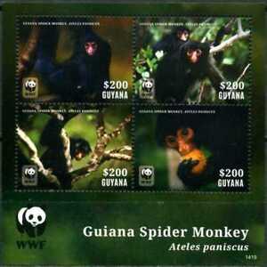 2014 Guyana, Spider Monkey, WWF,  souvenir sheet, MNH