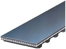 Engine Timing Belt-PowerGrip Premium OE Timing Belt Gates T071
