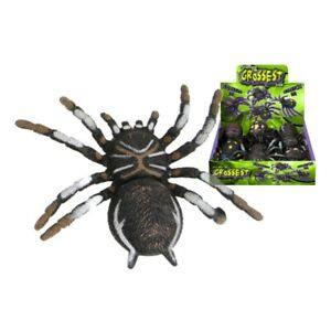Kandytoys 6.5 inch Tar Spider With Beans - Assorted