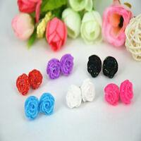 12 Pairs Resin Flower Ear Stud Jewellery Mixed Lots Stud Earrings Display