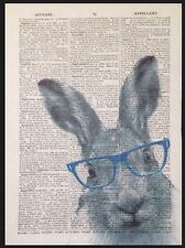 Vintage Grey Hare In Blue Glasses Print Dictionary Page Wall Art Picture Quirky