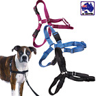 Pet Harness Easy Walk Dog Training Front Tether No Pull Reflective PDOC580