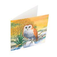 Craft Buddy Crystal Art D.I.Y Christmas Card Kit WINTER OWL diamond painting
