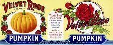 Velvet Rose Canned Pumpkin - Vintage Food Label Print