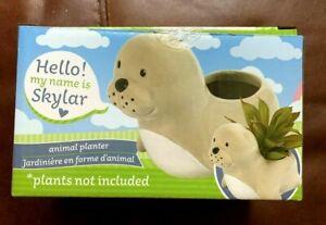 Skylar The Seal Ceramic Animal Planter for Succulents Small Plants Sponge Holder
