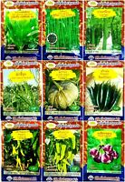 Golden Mountain Vegetable Garden Seed Natural Organic Wholesale Plant Quality #7