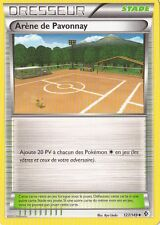 Arène de Pavonnay -N&B- Frontieres Franchies -127/149-Carte Pokemon Neuve France