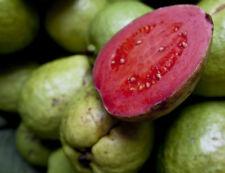 Fragante gigante rojo intenso guayaba 10 semillas más finos