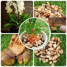 Coconut Husk fibre Chips for Gardening and Plants 100% Natural Organic 100g